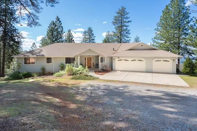18591 Ponderosa Hills Road, Volcano, CA 95689 (MLS #20029434) :: Heidi Phong Real Estate Team