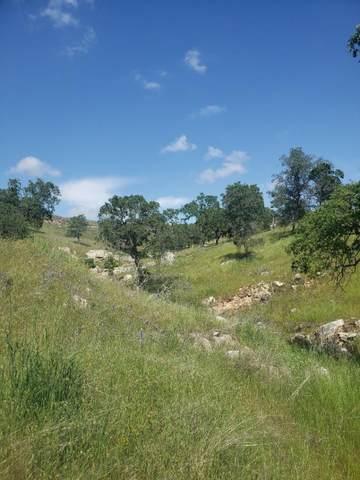9791 Alamo Drive, La Grange Unincorp, CA 95329 (MLS #20029575) :: Keller Williams - The Rachel Adams Lee Group
