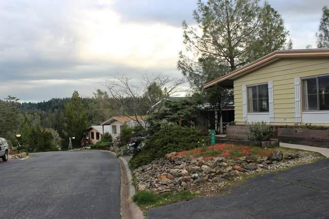 481 Holly Drive, Grass Valley, CA 95945 (MLS #20029610) :: REMAX Executive