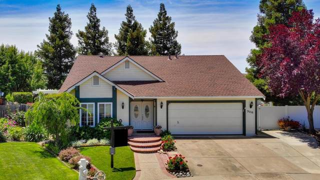 9016 Meadowfoam Court, Elk Grove, CA 95758 (MLS #20029976) :: Dominic Brandon and Team