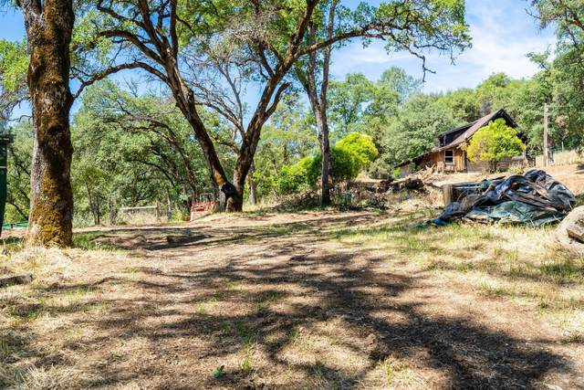 12564 Creek View Drive, Grass Valley, CA 95949 (MLS #20030062) :: REMAX Executive