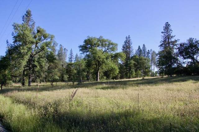 24 Lot 24 Indiana Ranch Road, Dobbins, CA 95935 (MLS #20030134) :: Heidi Phong Real Estate Team