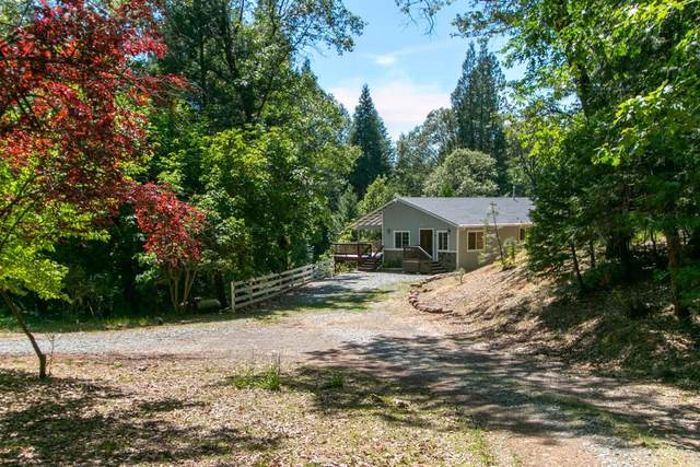 3330 Hanson Hollow Road, Georgetown, CA 95634 (MLS #20030174) :: Dominic Brandon and Team