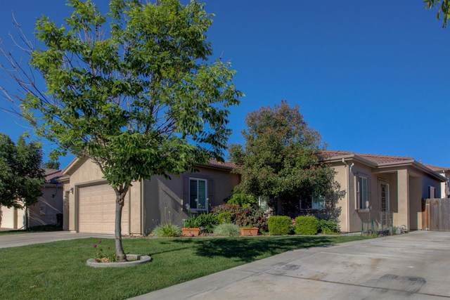 4223 Riopel Avenue, Denair, CA 95316 (MLS #20030344) :: The MacDonald Group at PMZ Real Estate
