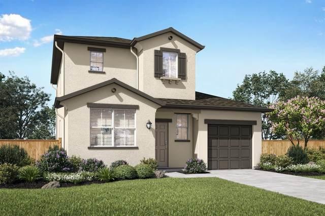 733 Blue Stone Drive, Stockton, CA 95206 (MLS #20030605) :: Keller Williams - Rachel Adams Group