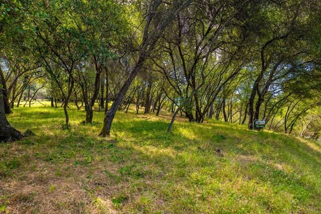 616 Torero Way, El Dorado Hills, CA 96762 (MLS #20030864) :: Keller Williams - The Rachel Adams Lee Group