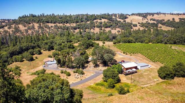 21390 Ostrom Road, Fiddletown, CA 95629 (MLS #20031705) :: The MacDonald Group at PMZ Real Estate
