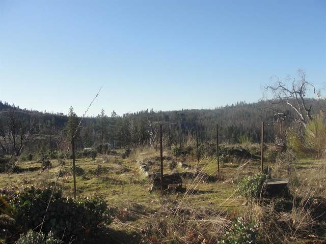 5776 Hangmans Tree, Mountain Ranch, CA 95246 (MLS #20031977) :: The MacDonald Group at PMZ Real Estate