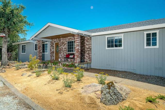 1520 Long Gate Road, Plymouth, CA 95669 (MLS #20032120) :: REMAX Executive
