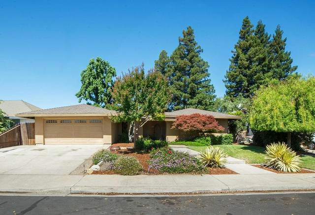 66 Willowood Drive, Oakdale, CA 95361 (MLS #20032625) :: Dominic Brandon and Team
