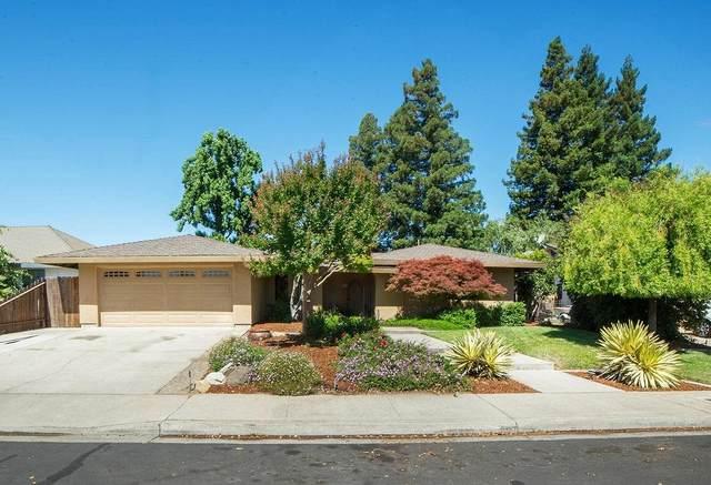 66 Willowood Drive, Oakdale, CA 95361 (MLS #20032625) :: The Merlino Home Team