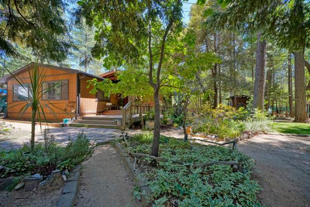 6095 Sly Park Road, Placerville, CA 95667 (MLS #20034739) :: REMAX Executive