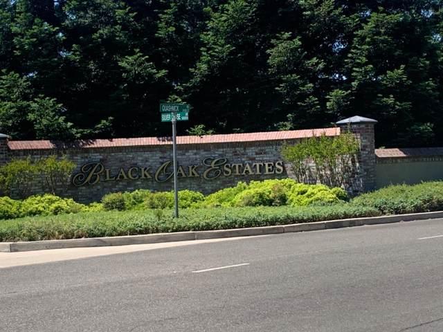 10390 Silver Chase Drive, Stockton, CA 95212 (MLS #20035167) :: Deb Brittan Team