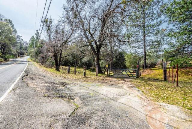 8260 Fairplay Road, Plymouth, CA 95684 (MLS #20035503) :: REMAX Executive