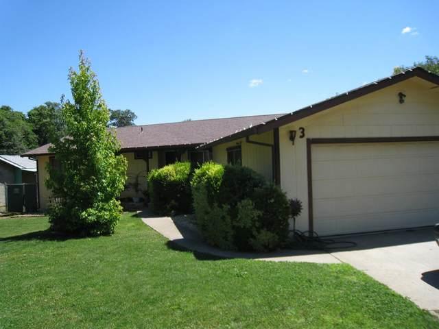 3 Crazyhorse Court, Oroville, CA 95966 (MLS #20035566) :: Dominic Brandon and Team