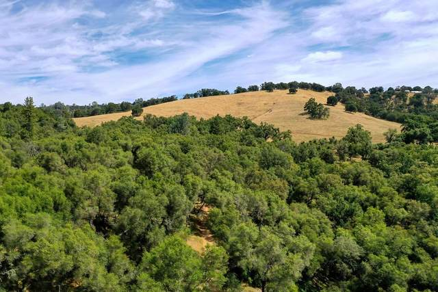 15255 Ballantree Lane, Grass Valley, CA 95949 (MLS #20035770) :: Keller Williams - The Rachel Adams Lee Group