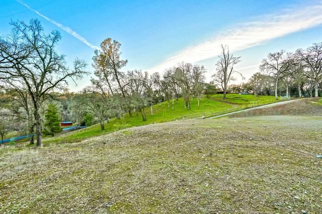 4165 Black Oak Drive, Shingle Springs, CA 95682 (MLS #20035962) :: REMAX Executive
