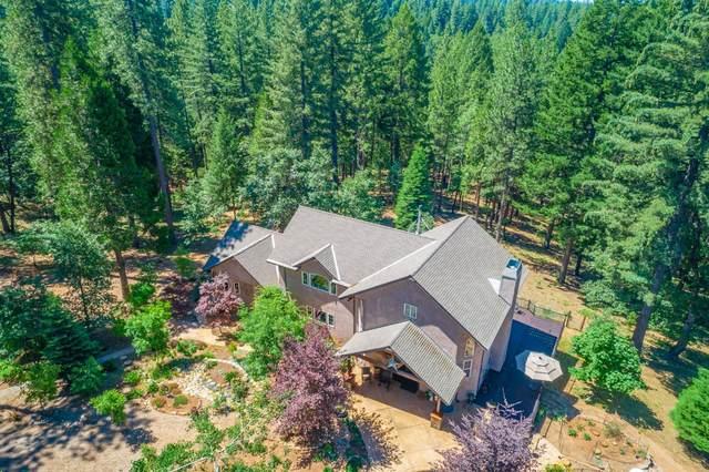2258 Old Blair Mill Road, Pollock Pines, CA 95726 (MLS #20036265) :: REMAX Executive