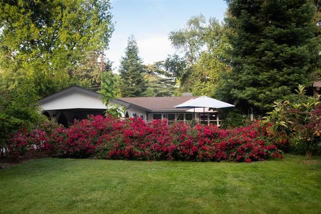 175 Park Drive, Roseville, CA 95678 (MLS #20036280) :: The Merlino Home Team