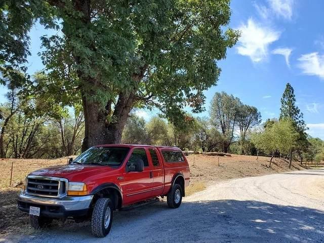10 Tullis Mine Road, Diamond Springs, CA 95619 (MLS #20036430) :: Keller Williams - The Rachel Adams Lee Group