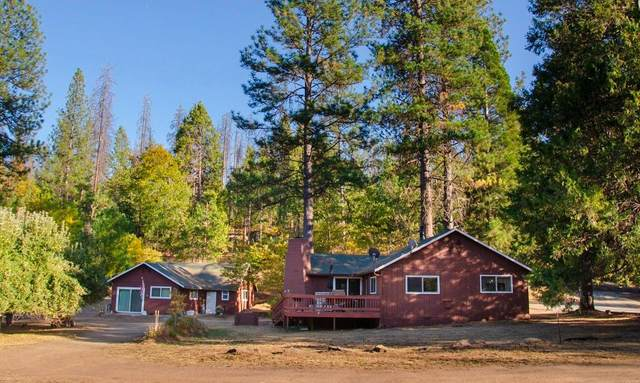 6791 Dogtown Road, Coulterville, CA 95311 (MLS #20036923) :: REMAX Executive