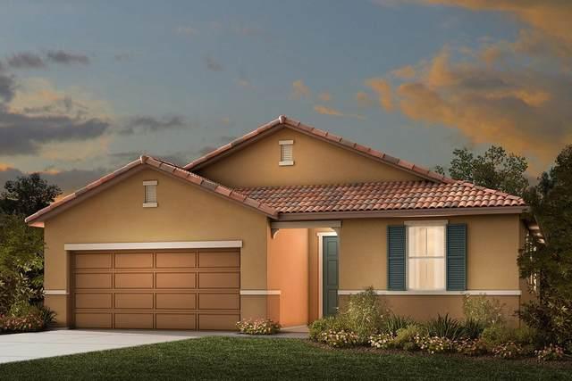 10176 Clapton Lane, Stockton, CA 95212 (MLS #20036955) :: The Merlino Home Team