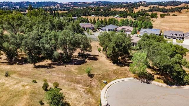 1562 Nevill Court, Jackson, CA 95642 (MLS #20037122) :: The Merlino Home Team