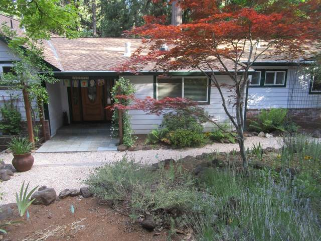 12547 Valley View Road, Nevada City, CA 95959 (MLS #20037211) :: Dominic Brandon and Team