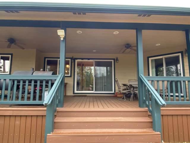 6022 Scott Rd, Mariposa, CA 95338 (MLS #20037339) :: The Merlino Home Team