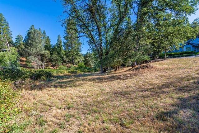 2770 Sleepy Hollow Court, Placerville, CA 95667 (MLS #20037453) :: The Merlino Home Team