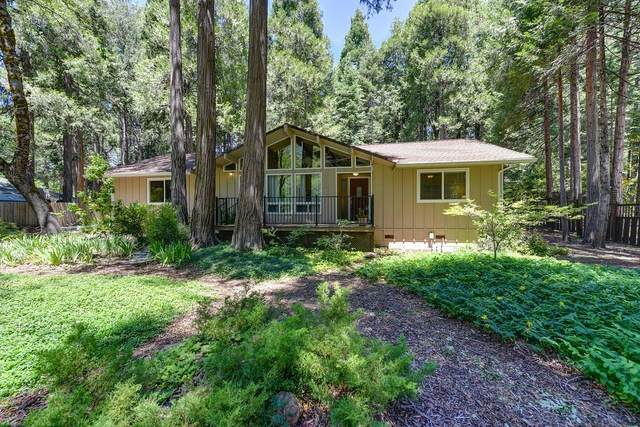 13246 Red Dog Road, Nevada City, CA 95959 (MLS #20037774) :: Dominic Brandon and Team