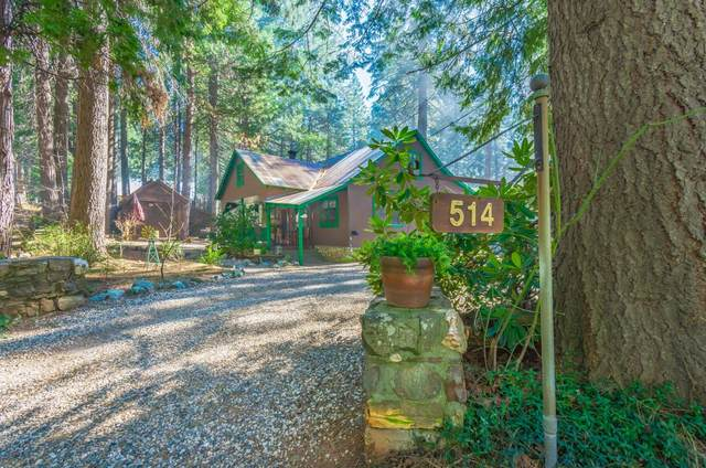 514 Alta Power House Rd., Alta, CA 95701 (MLS #20038091) :: The MacDonald Group at PMZ Real Estate