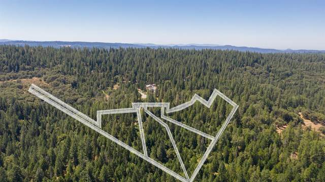 19350 Tyleranne Lane, Volcano, CA 95689 (MLS #20038206) :: Dominic Brandon and Team