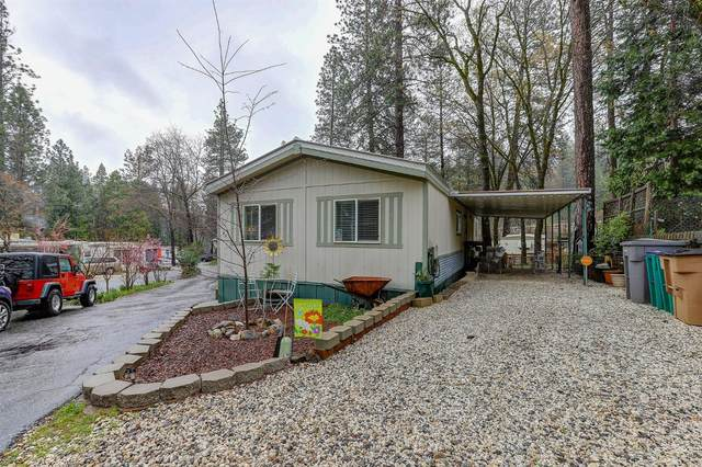 14338 State Highway 49 #45, Grass Valley, CA 95949 (MLS #20038254) :: Dominic Brandon and Team