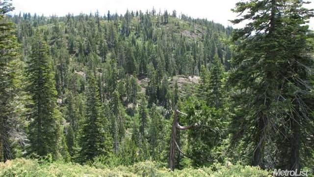 99996 Off Forest Route 38, Alta, CA 95715 (MLS #20038298) :: The MacDonald Group at PMZ Real Estate