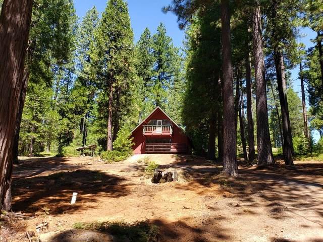19507 Woodridge Drive, Pioneer, CA 95666 (MLS #20038689) :: Heidi Phong Real Estate Team