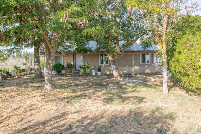 19735 State Highway, Dos Palos, CA 93620 (MLS #20039343) :: Dominic Brandon and Team