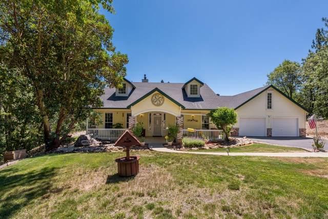 4035 Big Barn Court, Placerville, CA 95667 (MLS #20039487) :: REMAX Executive