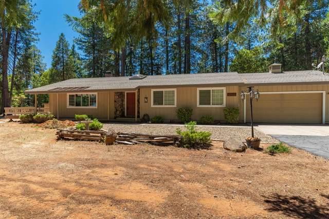 16101 Paradise Road, Pioneer, CA 95666 (MLS #20039633) :: The MacDonald Group at PMZ Real Estate