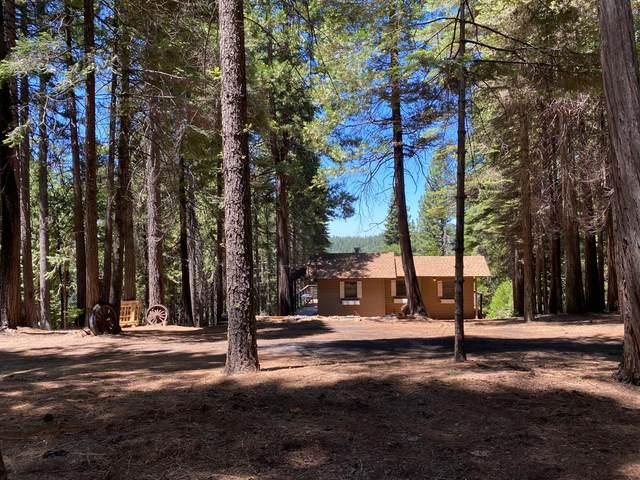 27059 Woodland Road, Pioneer, CA 95666 (MLS #20039724) :: The MacDonald Group at PMZ Real Estate
