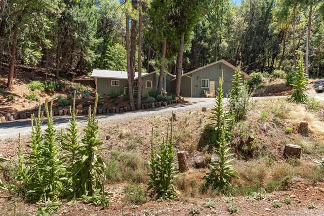 14500 Pioneer Volcano Road, Pine Grove, CA 95666 (MLS #20039920) :: Heidi Phong Real Estate Team