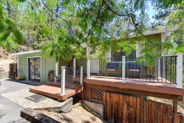 2370 Big Canyon Creek Road, Placerville, CA 95667 (MLS #20040081) :: REMAX Executive