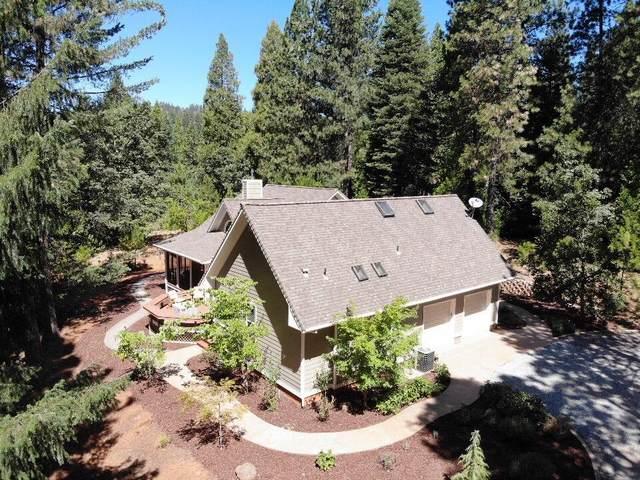 17401 Isabel Court, Pioneer, CA 95666 (MLS #20040174) :: Heidi Phong Real Estate Team