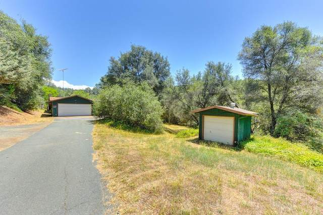 18000 Hale Road, Volcano, CA 95689 (MLS #20041404) :: The MacDonald Group at PMZ Real Estate