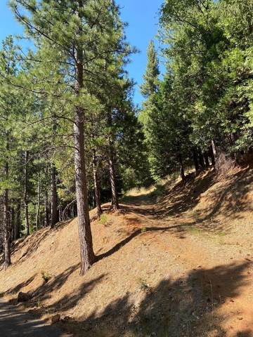 5117 Woodhaven Drive, Grizzly Flats, CA 95636 (MLS #20042543) :: REMAX Executive