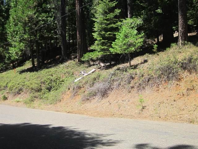 5253 Golden Aspen Drive, Grizzly Flats, CA 95636 (MLS #20043147) :: REMAX Executive