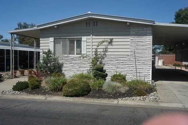 54 Camino Real Drive, Lodi, CA 95240 (MLS #20043379) :: 3 Step Realty Group
