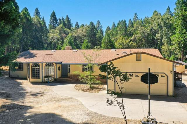 12545 Beaver Drive, Grass Valley, CA 95945 (MLS #20043704) :: Dominic Brandon and Team