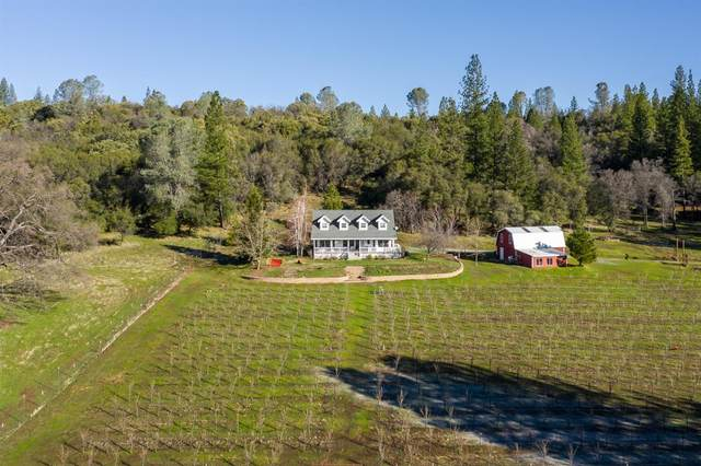 19331 Fiddletown Road, Fiddletown, CA 95629 (MLS #20044698) :: The MacDonald Group at PMZ Real Estate