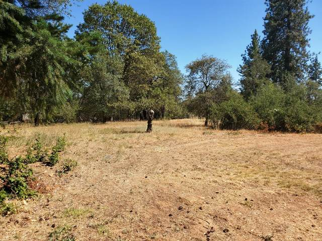 13645 Marin Place, Grass Valley, CA 95949 (MLS #20045365) :: Dominic Brandon and Team